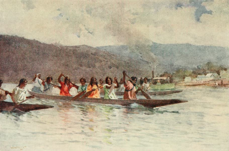 New Zealand, Painted and Described - Wahine's Canoe Race on the Waikato (1908)