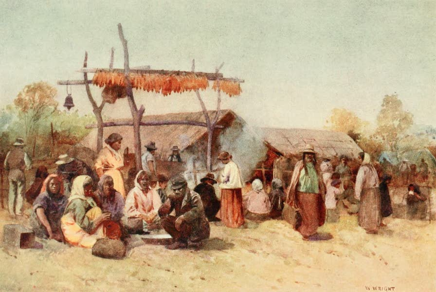 New Zealand, Painted and Described - Native Gathering (1908)