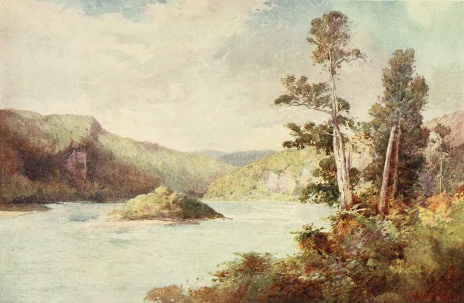 New Zealand, Painted and Described - White Cliffs, Buller River (1908)