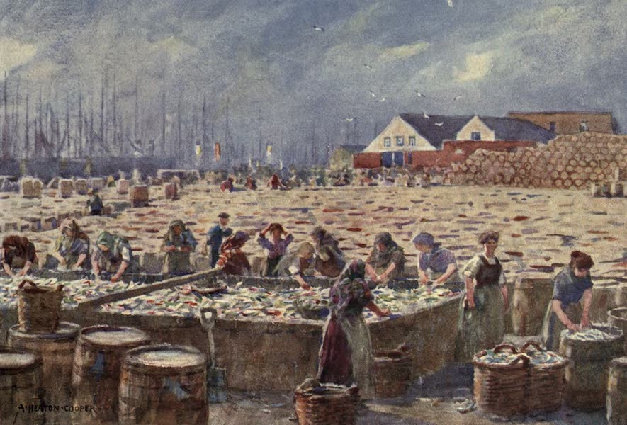 Norfolk and Suffolk Painted and Described - Yarmouth,Norfolk - The Herring Harvest (1921)