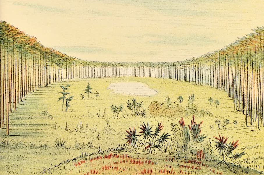 North American Indians Vol. 2 - Fig. 147 (1926)