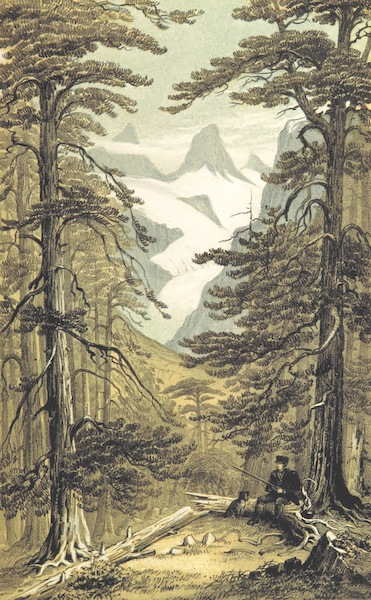 Norway in 1848 and 1849 - Hurungerne Peaks from the Forest of Koldedal (1850)