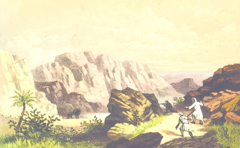 Notes in North Africa - Shooting Hyenas on the Purple Mountains near El Greshe (1862)