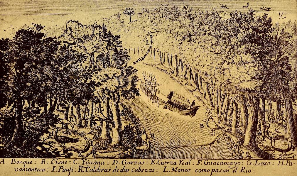 Old Panama and Castilla del Oro - Ascending the Chagres River (1911)