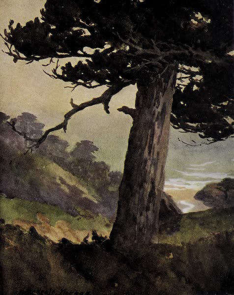 On Sunset Highways - The Gate of Valpaiso Canyon, Monterey (1915)