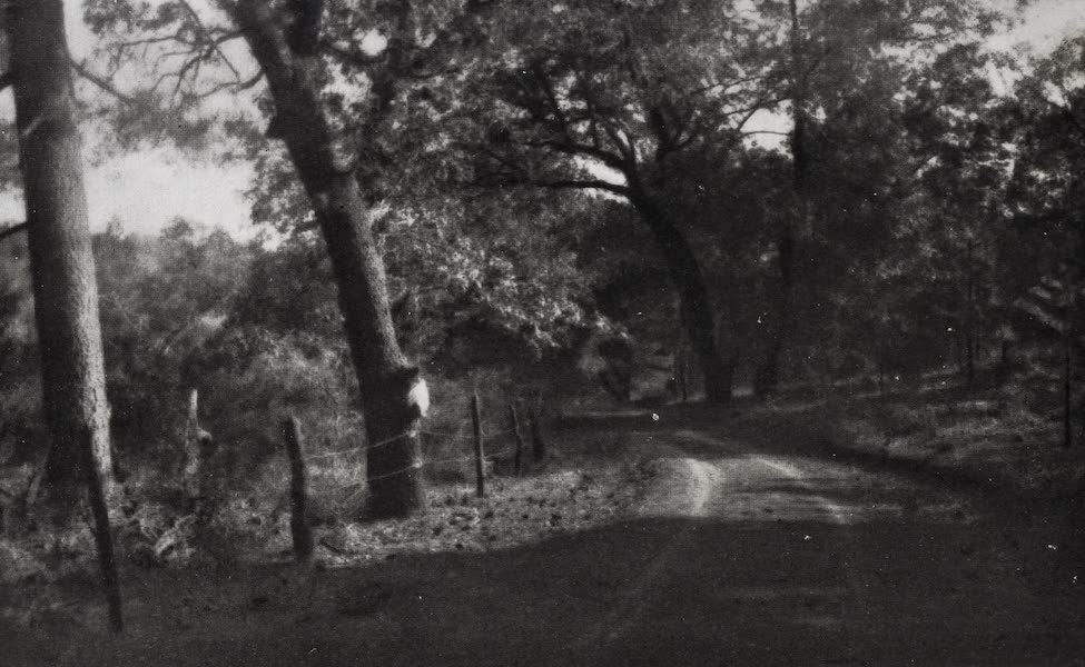 On Sunset Highways - A Country Byway (1915)