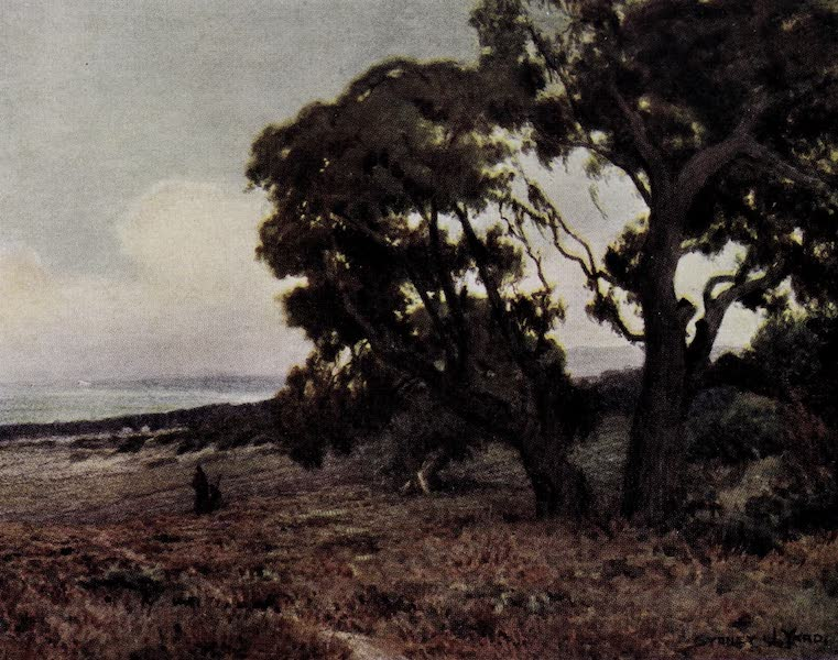 On Sunset Highways - Evening near Monterey (1915)