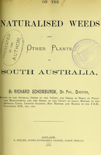 On the Naturalised Weeds and Other Plants in South Australia (1879)