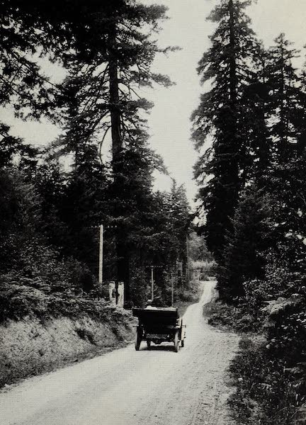 Oregon, the Picturesque - On the Pacific Highway (1917)