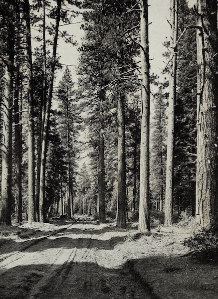 Oregon, the Picturesque - The Road to Crater Lake (1917)