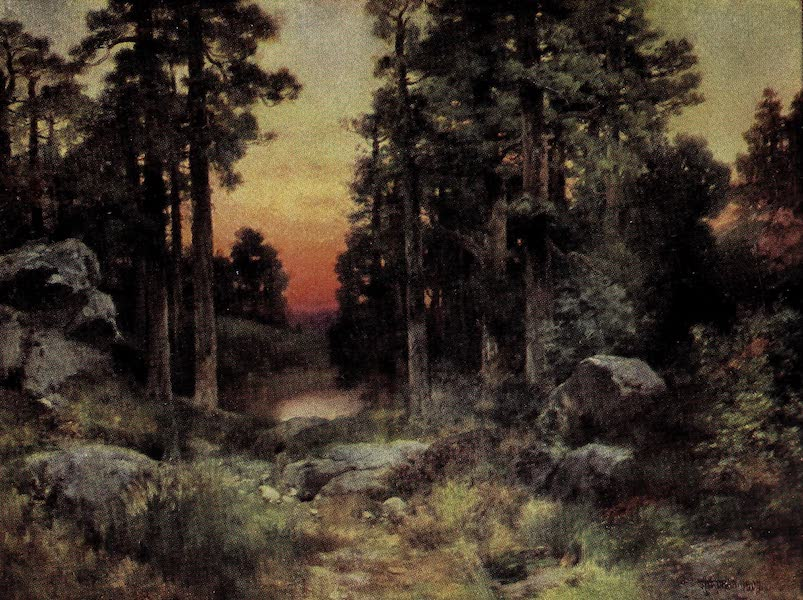 Oregon, the Picturesque - Solitude-the Arizona National Forests (1917)