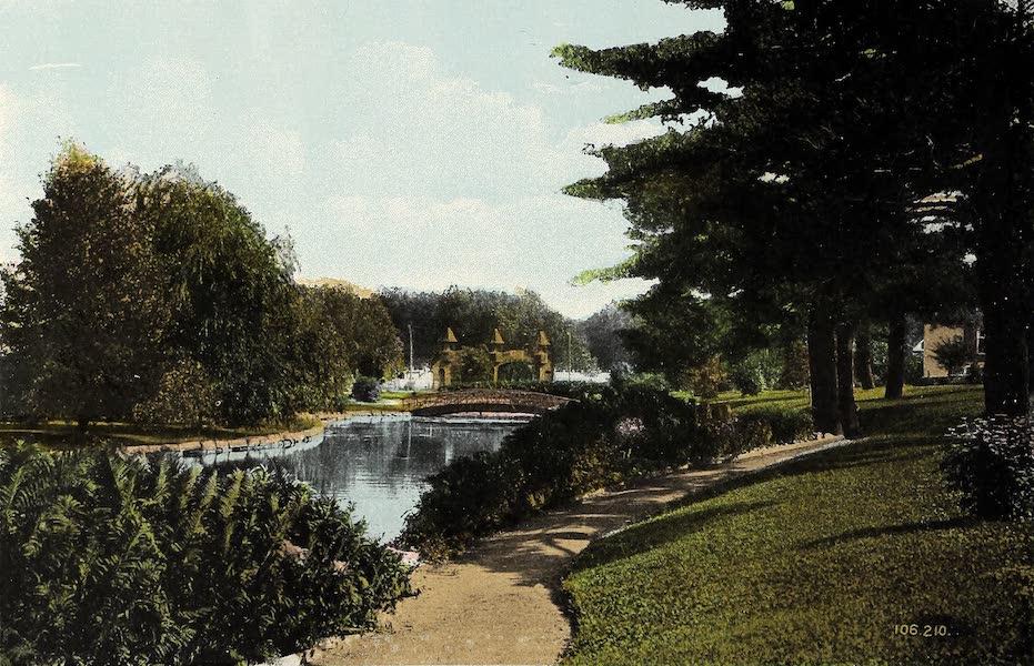 Ottawa and Vicinity - Along by the Driveway (1900)