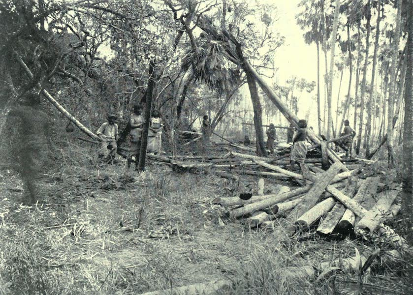 Paraguay by Henry Koebel - The Chaco Lumber Industry (1917)