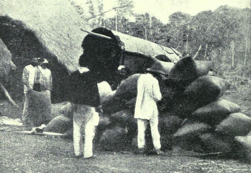 Paraguay by Henry Koebel - Packing Yerba (1917)