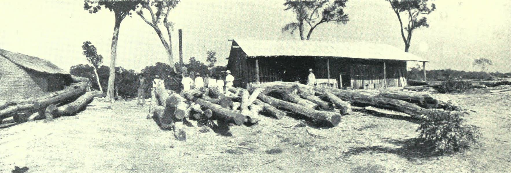 Paraguay by Henry Koebel - The Timber Industry (1917)