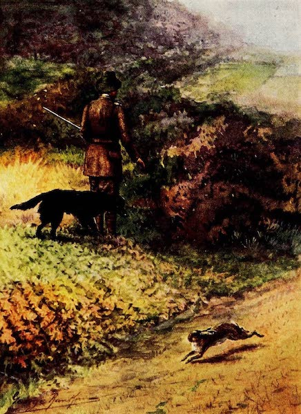 Partridges and Partridge Manors - 'Ware Chase' (1911)