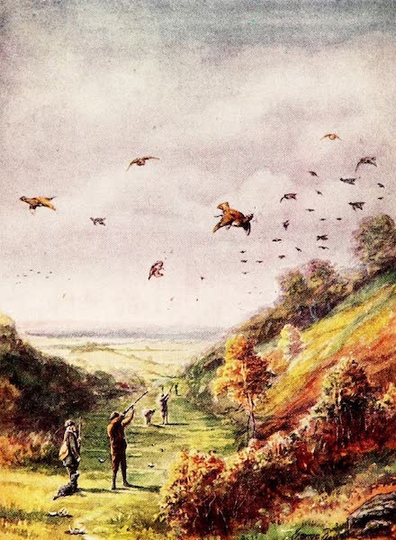 Partridges and Partridge Manors - 'The Valley of Death' (1911)