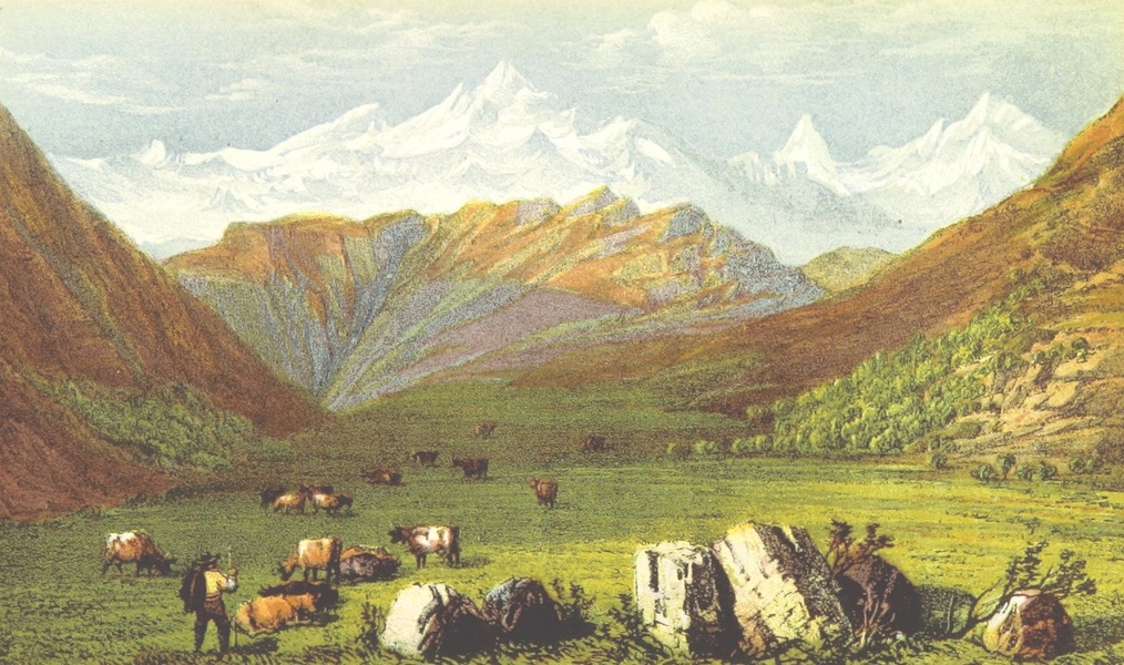 Peaks, Passes and Glaciers - The Dom and Weisshorn from the Aeggisch Horn (1859)