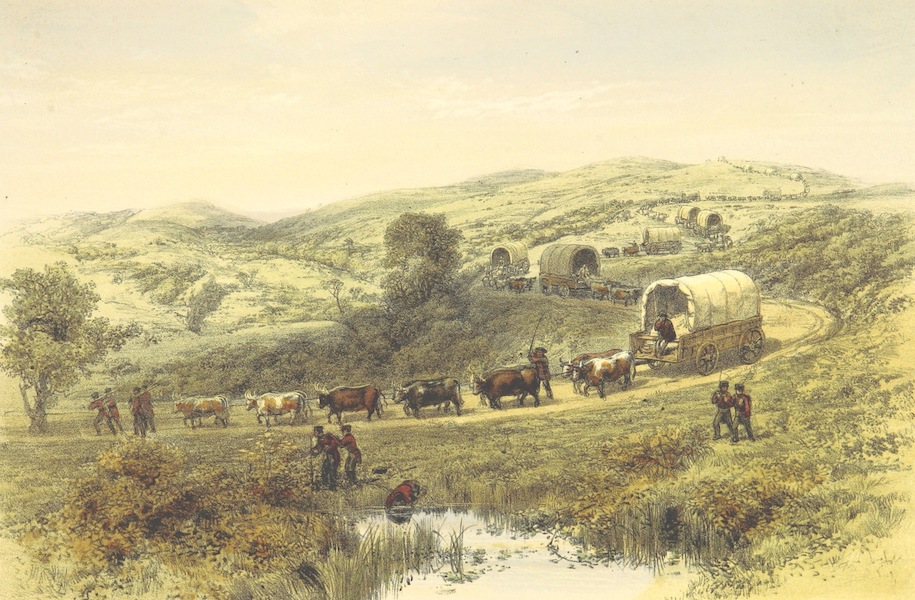 Pen and Pencil Reminiscences of a Campaign in South Africa - Waggon Train (1861)