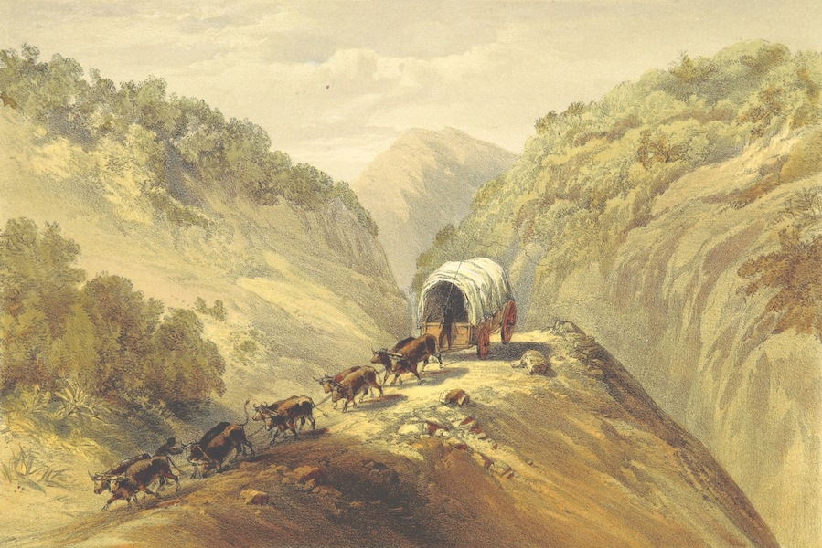 Pen and Pencil Reminiscences of a Campaign in South Africa - Waggon Road in the Ecca Valley (1861)