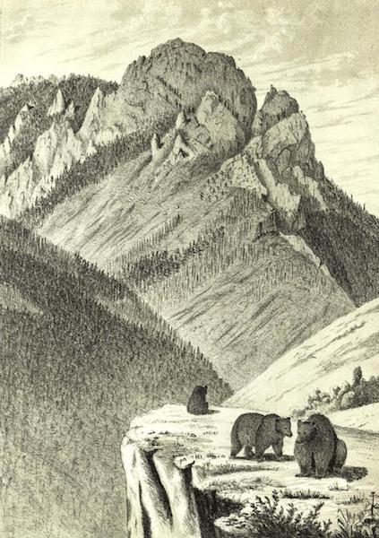 Pencil Sketches of Montana - Spring Canyon (1868)