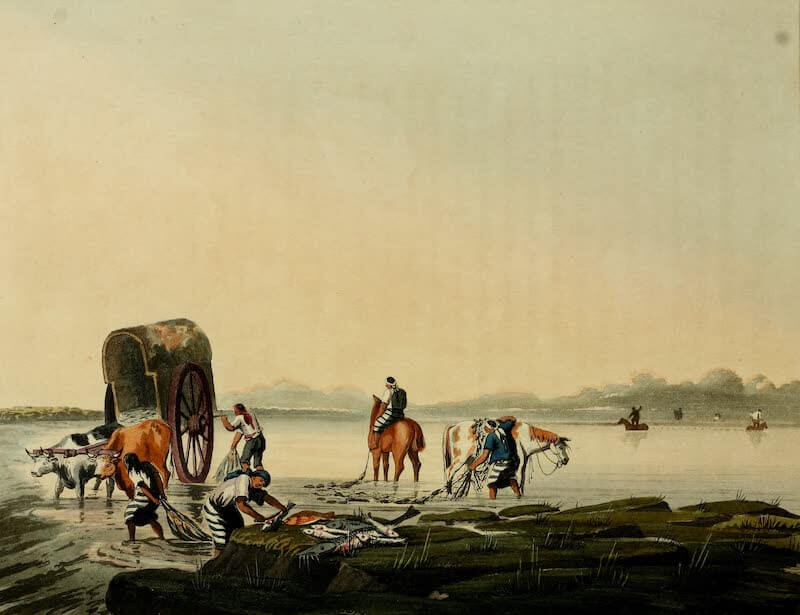 Picturesque Buenos Ayres & Monte Video - Fishing (1820)