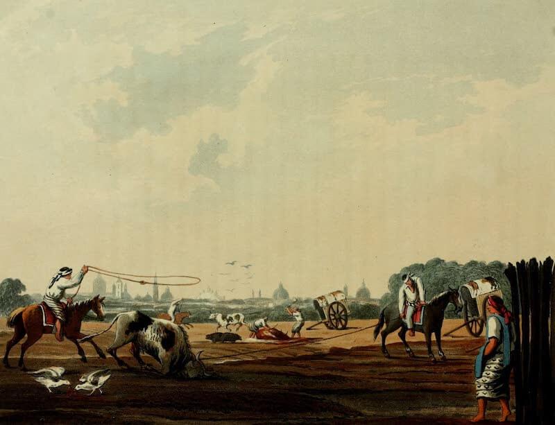 Picturesque Buenos Ayres & Monte Video - South Matadero (Public Butchery) (1820)