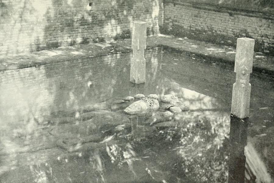 Picturesque Nepal - The Submerged Statue of Narain at Balaji (1912)