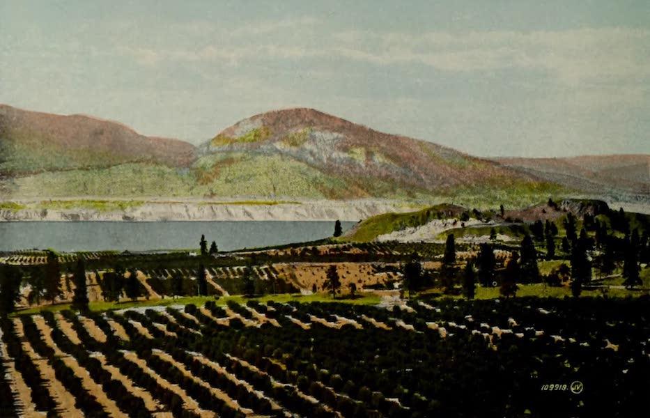 Picturesque Okanagan - Fruit Ranch, Okanagan Valley (1910)