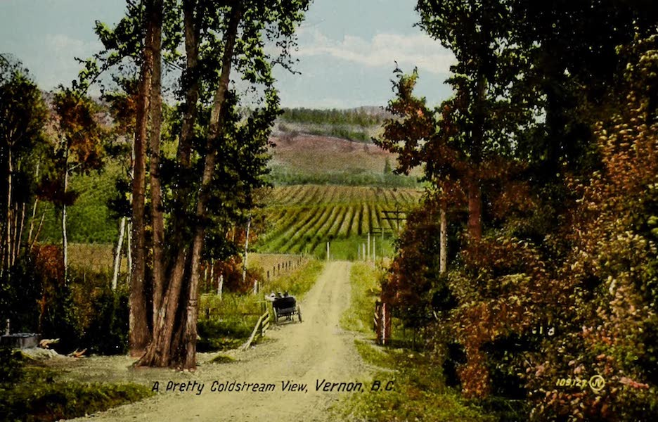Picturesque Okanagan - A Pretty Coldstream View, Vernon, B.C. (1910)