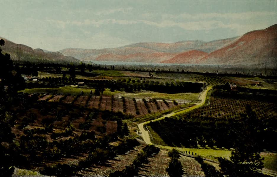Picturesque Okanagan - The Benches from Munsons Hill, Penticton, B.C. (1910)