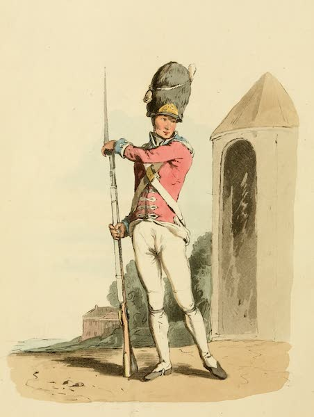 Picturesque Representations of the English - Grenadier of the 1st Regiment of Guards (1813)