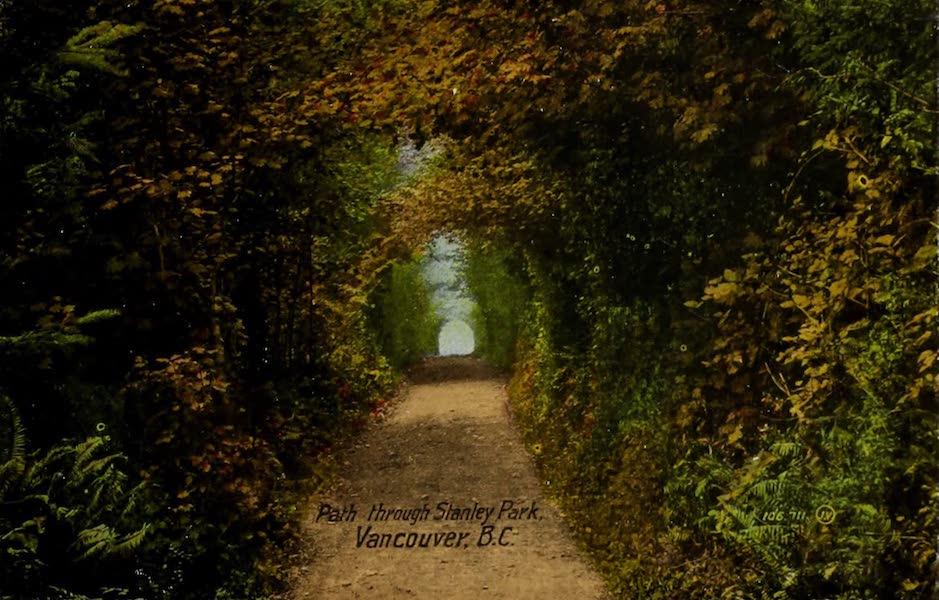 Picturesque Vancouver B.C. - Path through Stanley Park, Vancouver, B.C. (1910)