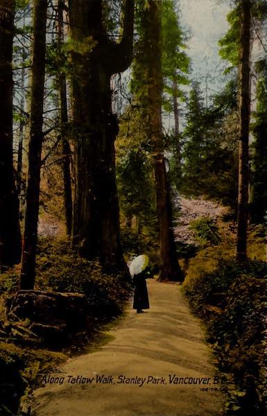 Picturesque Vancouver B.C. - Along Tatlow Walk, Stanley Park, Vancouver, B.C. (1910)
