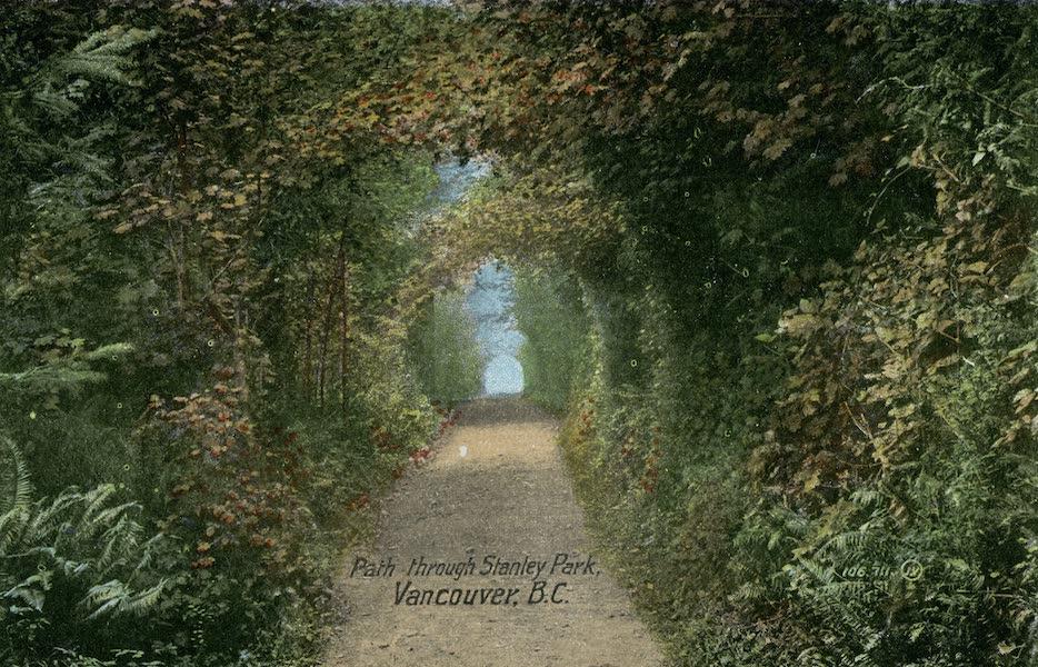 Picturesque Vancouver B.C. - Path through Stanley Park (1911)