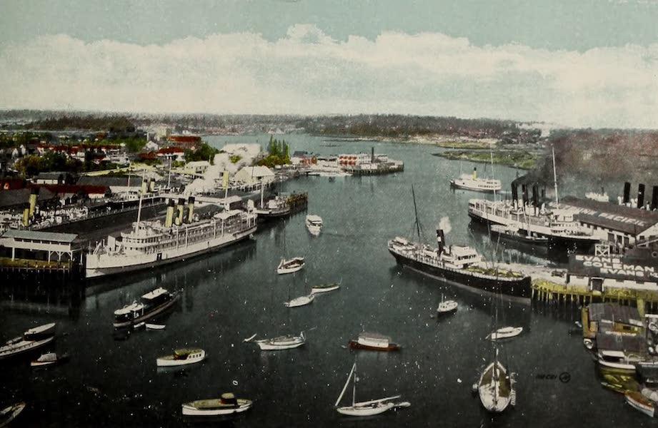 Picturesque Victoria - The Harbour (1910)