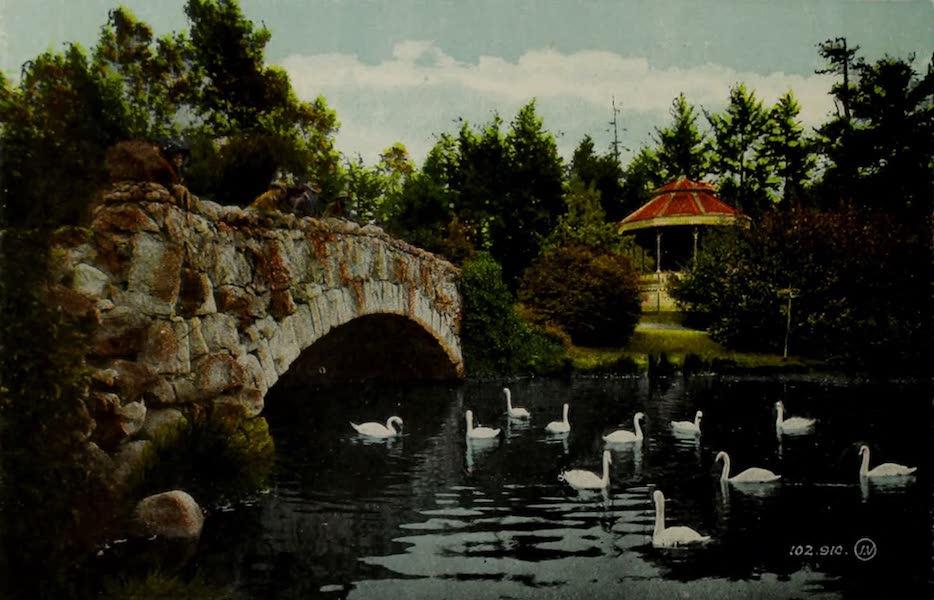 Picturesque Victoria - Bridge and Bandstand, Beacon Hill Park (1910)