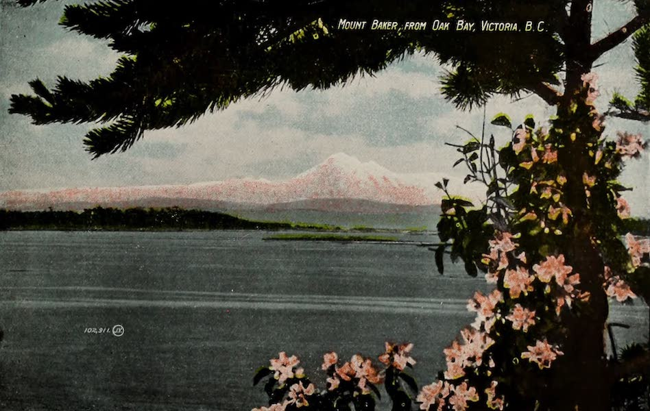 Picturesque Victoria - Mount Baker, from Oak Bay, Victoria B.C. (1910)