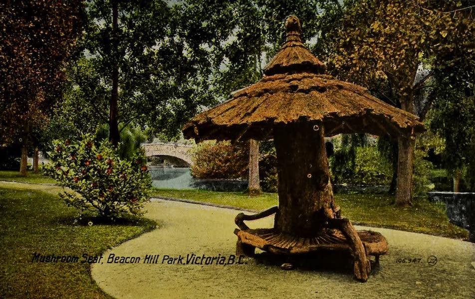 Picturesque Victoria - Mushroom Street, Beacon Hill Park, Victoria B.C. (1910)