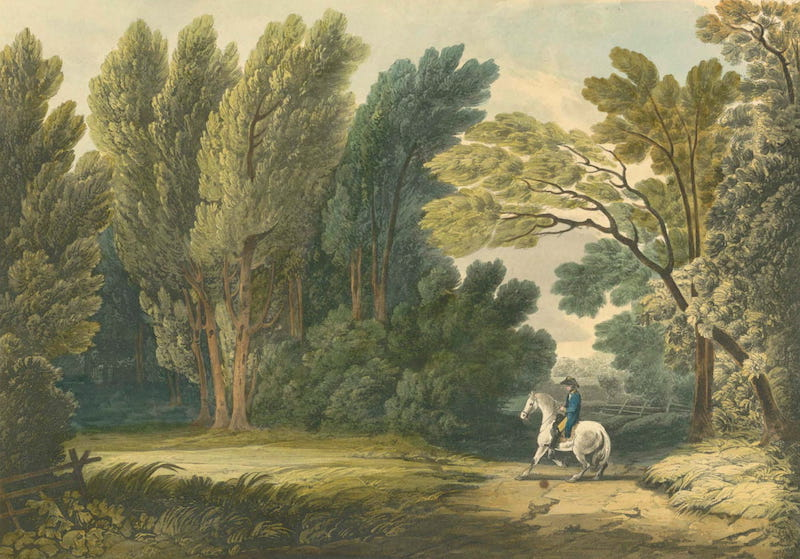Picturesque Views of American Scenery - View of the Spot Where General Ross Fell (1820)