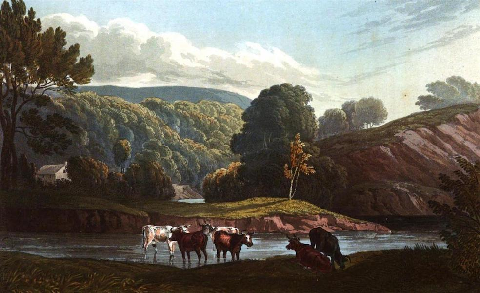 Picturesque Views on the River Exe - View on the Exe (1819)
