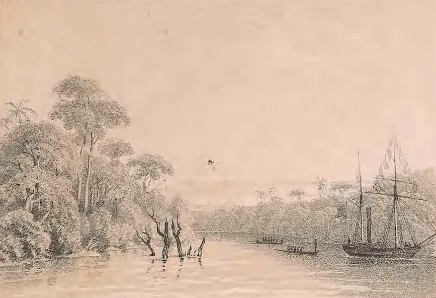 Picturesque Views on the River Niger - Views on the Nun Branch of the River Niger [I] (1840)