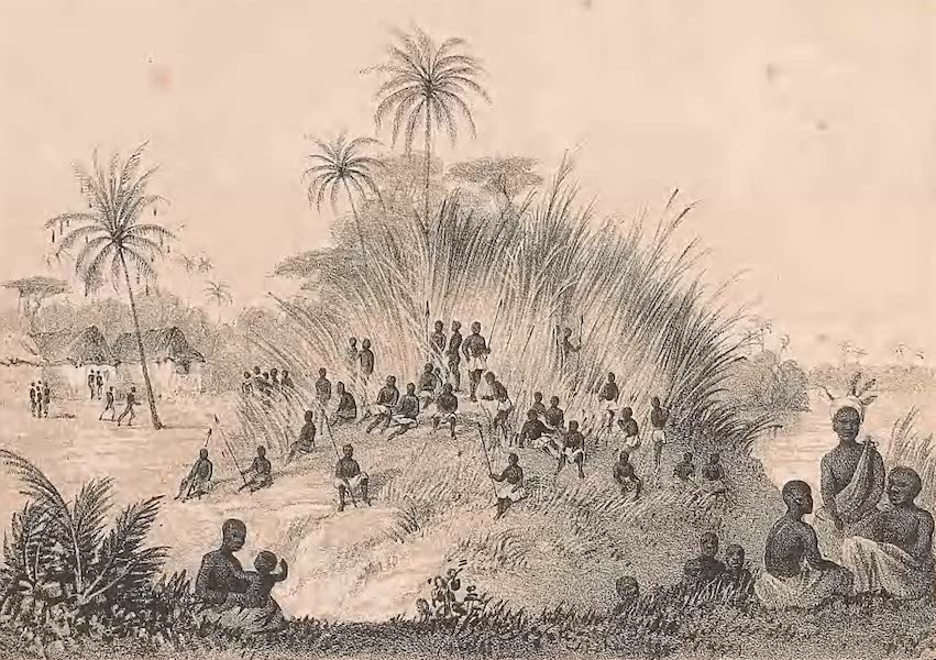 Picturesque Views on the River Niger - Views on the Nun Branch of the River Niger [IV] (1840)