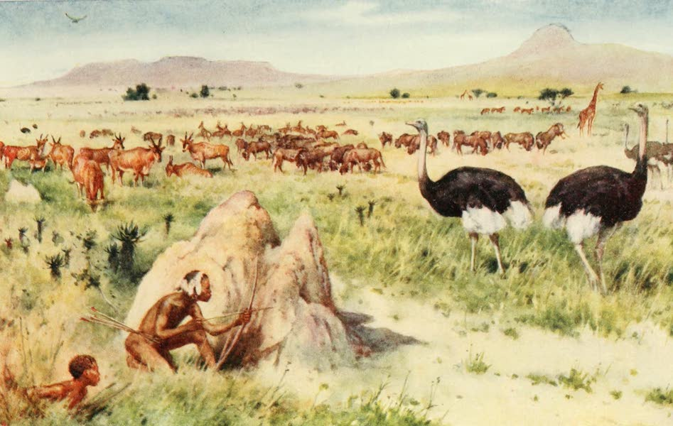 Pioneers in South Africa - A South African Plain Before the Coming of the White Man (1914)