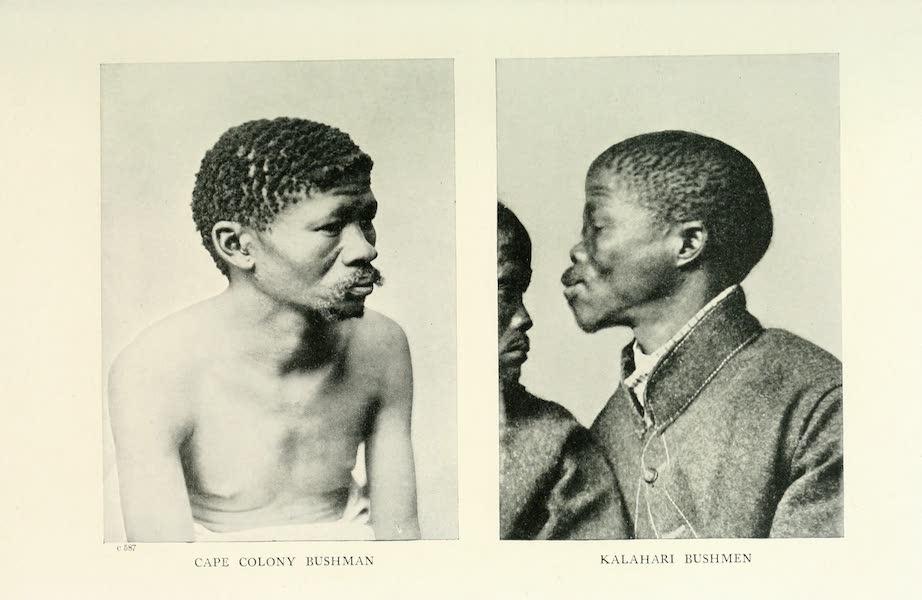 Pioneers in South Africa - Kalahari Bushmen (1914)