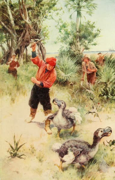 Pioneers in South Africa - Dutch Sailors Pursuing Dodos (1914)