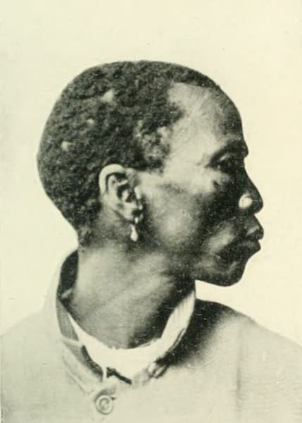 Pioneers in South Africa - Hottentot (1914)