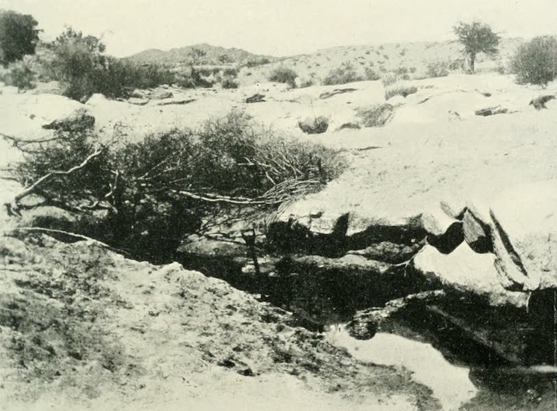 Pioneers in South Africa - A Water Hole in the Kalahari Desert (1914)