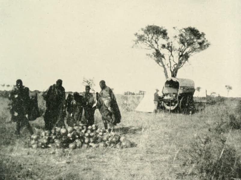 Pioneers in South Africa - Selling Water Melons in the Kalahari Desert (1914)