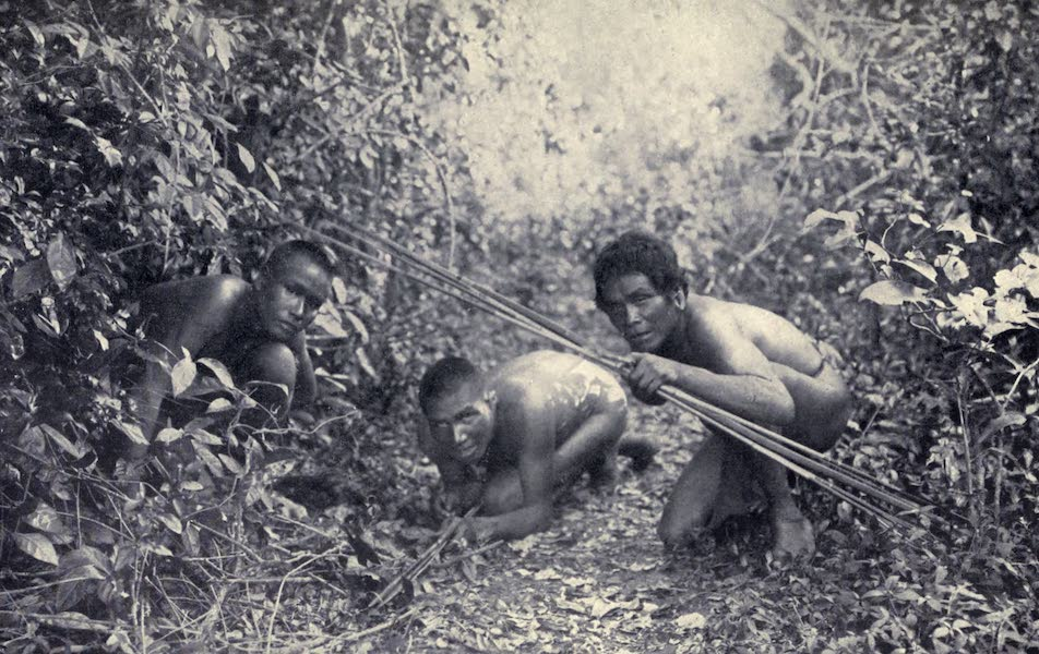 Pioneers in Tropical America - Indians of the Amazon (1914)